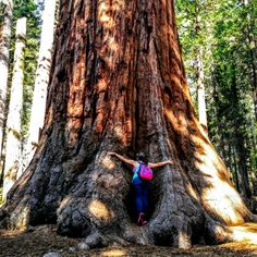 I'm a tree huger!