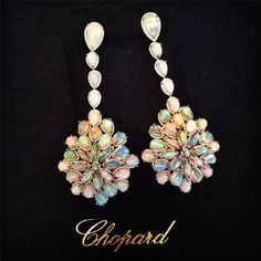 Attention all lovers of decadent opal jewelry! Actress Cate Blanchett practically glistened in these Chopard opal and diamond drop earrings at the 2014 Academy Awards. The earrings feature 33 cts. white opals in white gold with diamond pavé. Diamond Drop Earrings, Opal Earrings, Opal Jewelry, Jewelry Box, Fine Jewelry, Jewelry Ideas, Vintage Jewelry, Bijou Box, Jewelry 2014