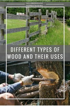 Different types of wood are better to use for different projects. The pioneers understood what type of wood makes the best fences, or furniture, or cabins. This post details 9 different types of wood and how to use them. | Hillsborough Homesteading