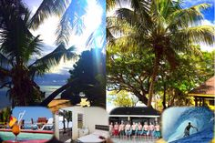 Stay Surf And Relax At Funky Fish Fijisurf Surfingfiji Surf