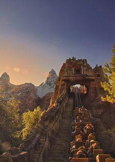 Disney World animal Kingdom expedition Everest