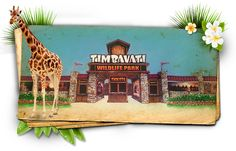 Timbavati Wildlife Park Coming Soon! | Wisconsin Dells, WI