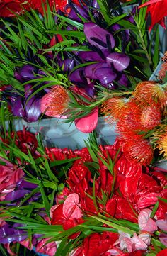 """Buckets of brilliant anthuriums and proteas sit ready """"for sale"""" at the Hilo Farmer's Market on the Big Island of Hawaii."""
