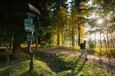 10 mooie gebieden voor een wandelvakantie in Duitsland | oppad.nl