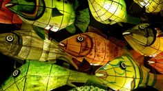 Google Image Result for http://i.images.cdn.fotopedia.com/flickr-3166130883-hd/Japan/Thematic_division/Household_Items_and_Furnishings_Traditional/Japanese_lantern_/Paper_lantern/Paper_Fish_Lanterns.jpg