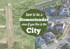 How to homestead even if you live in the city 6 Ways to Homestead in the City