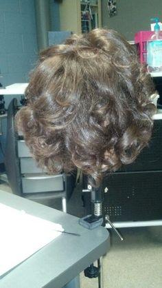 Curlyy hurr