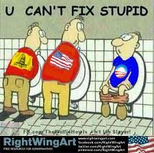 u can't fix stupid... Not laughing at the political side just the picture....