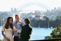 The Duke and Duchess of Cambridge patted a young koala named Leuca, at the harbourside zoo