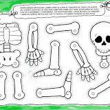 esqueletos para montar