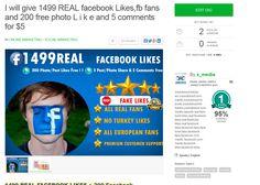 #buyfacebooklikes #realfacebooklikes  http://www.fiverr.com/s/5f6cuf