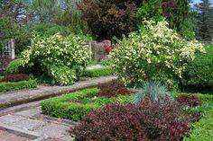 Linwood Gardens May 2014