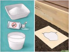 How to Get Rid of Carpenter Ants: 12 Steps (with Pictures)