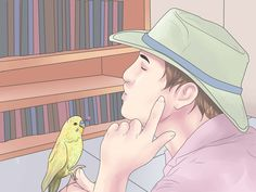 Understanding parakeet behavior (Read inside of the pin to see if your budgie likes you. Parakeet Food, Parakeet Care, Budgie Parakeet, Diy Parakeet Cage, Cockatiel, Pet Bird Cage, Parrot Toys, Diy Budgie Toys, Bird Toys