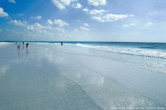 Siesta Beach, Sarasota, Florida~One of the most Beautiful in all of Florida...IMO