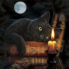 The Mountain cat halloween cats spooky