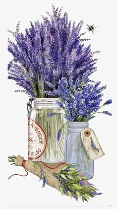 New Mary Lake Thompson Herb Jar Lavender Bee Kitchen Flour Sack Towel Nuevo Mary Lake Thompson Hierba Tarro Lavanda Abeja Cocina Toalla saco de harina Decoupage Vintage, Decoupage Paper, Vintage Diy, Art Floral, Etiquette Vintage, Images Vintage, Work Horses, Dish Towels, Tea Towels