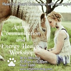 Join our Animal Communication and Energy Healing Workshop. Learn Healing skills for human and pets. Chakra Cleansing, grounding and protection against negative energy. Connect with your pets and deceased pets. And many more.....email for registering amy@amylimhealing.com