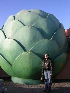 World's largest artichoke