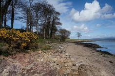 The shoreline at Redcastle