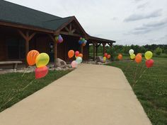 Balloons attached to golf tees lining the sidewalk for Daniel Tiger party!