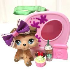 Littlest Pet Shop Lot LPS Brown Tan Collie Dog Blue Eye 893 RARE + Accessories