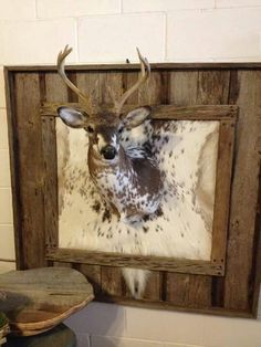 Great idea if you're not doing a full body mount with a piebald or albino Deer Hunting Decor, Deer Decor, Hunting Cabin, Bow Hunting, Deer Mount Decor, Hunting Rooms, Hunting Bedroom, Taxidermy Decor, Taxidermy Display