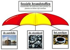 woordcluster fossiele brandstoffen What Is Life About, School Projects, Classroom, Learning, Biology, Class Room, Class Projects