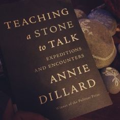 """""""You do not have to sit outside in the dark. If, however, you want to look at the stars, you will find that darkness is necessary. But the stars neither require nor demand it."""" ~ Annie Dillard"""