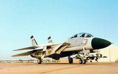 F-14 and F-16 Top Gun