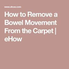 How to Remove a Bowel Movement From the Carpet | eHow