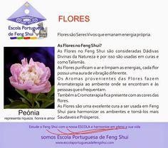 Escola Portuguesa de Feng Shui: FLORES
