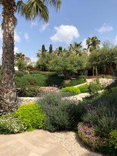jochen lendle jle arquitectos Solar, Hotels, Golf Courses, Sidewalk, Architects, Landscape Architecture, House Building, Cool Architecture, Restoration