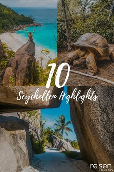 My ten Seychelles highlights! - EXCLUSIVE travel - Dream islands in the middle of the Indian Ocean – The Seychelles are a true paradise. Capitol Reef National Park, Grand Canyon National Park, Seychelles Islands, Seychelles Vacation, Australia Flights, Places To Travel, Travel Destinations, Cruise Travel, Africa Travel