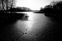 ice light   Flickr - Fotosharing!