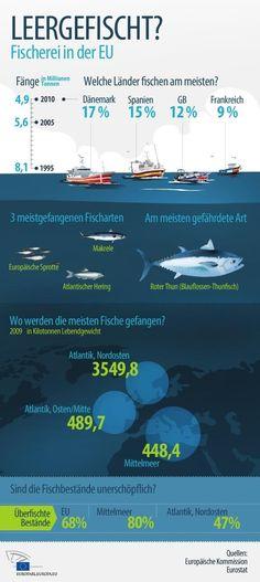 """""""Umwelt und Fischer werden von Ende der Überfischung profitieren"""""""