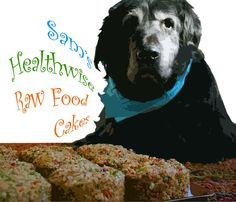 Sam's Healthwise Raw Food Cakes: Recipe for making your own raw dog food.