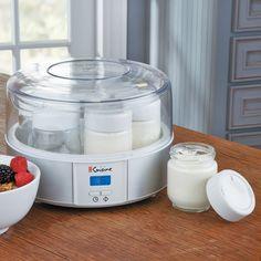 yogurt Dahi  maker as great wedding gift idea for Indian groom and bride
