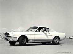 323 best mustang fastbacks images mustang fastback vintage cars rh pinterest com  1965 mustang fastback gt a code