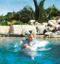 Dolphin Ride in Xel-Ha This dolphin program will give you a once-in-a-lifetime opportunity! Swim with dolphins and have fun as you interact with them in several ways.
