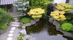 Stunning Small Japanese Garden Design Ideas Images With Awesome And Wonderful Decorating Small Garden Ideas With Natural Japanese Style Small Japanese Garden, Japanese Garden Design, Japanese Gardens, Japanese Style, Japanese Landscape, Japanese Koi, Japanese Culture, Japanese Modern, Japanese House