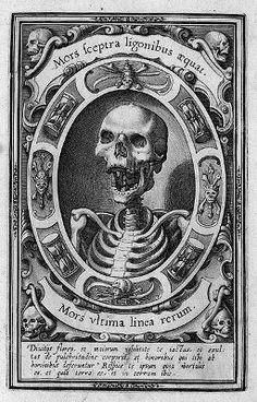Death Tarot Card   death1
