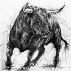 The Trouble Maker, Black Charcoal Bull Print (Highest Quality Giclee Print smooth 300 gsm paper) Charcoal Art, Charcoal Drawings, Pencil Drawings, Skull Drawings, Taurus Bull Tattoos, Bull Images, Bull Painting, Bucking Bulls, Hipster Drawings