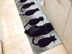 Catouflage...