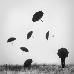 .Flying umbrellas...   www.Skymosity.com