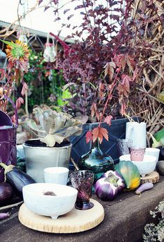 Fall color/table story | Flickr - Photo Sharing!
