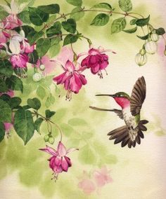 Hummingbird with Flowers Cross stitch pattern pdf by diana70