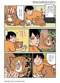 Cat Comics, Comic Strips, Webtoon, Funny Cats, Comedy, Funny Pictures, Manga, Animals, Fanny Pics