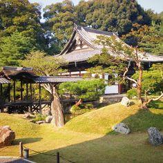 Throw back to this beautiful place. #kodaiji #kyoto #japan #trip #beautiful #landscape #photography