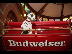 """HD Clydesdales 2013 Budweiser Super Bowl Ad — Extended Version of """"Brotherhood"""" - YouTube"""